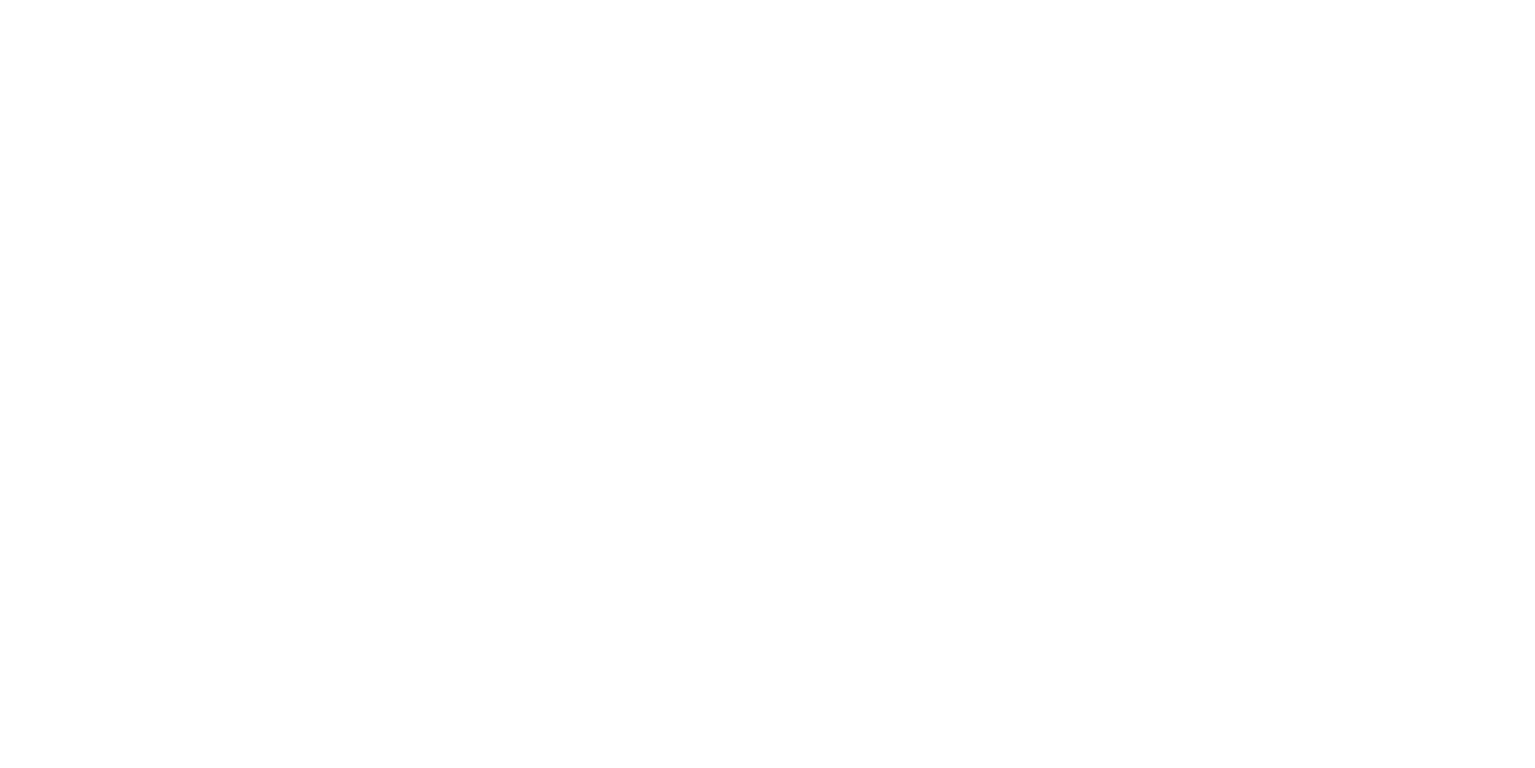 The Grumpy Cook